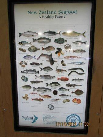 Auckland Fish Market: Fish Market