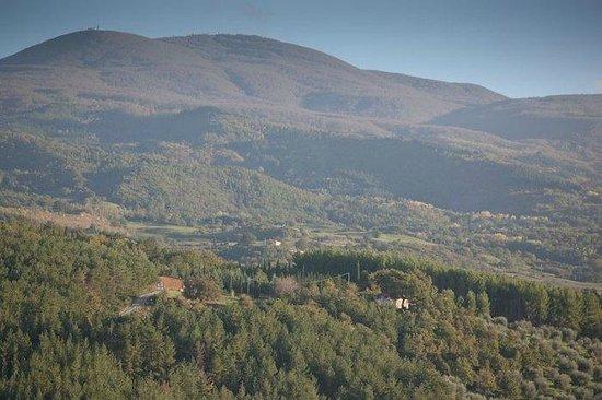 Tenuta La Silva : Il nostro maneggio con alle spalle il Monte Amiata