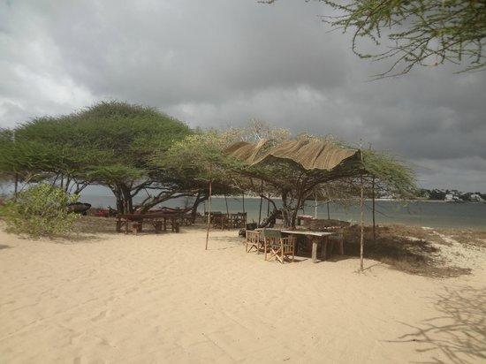 Lamu House Hotel: Lamu Beach House