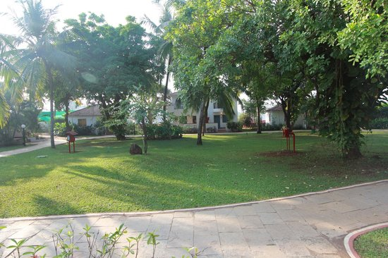 Dona Sylvia Beach Resort: gardens