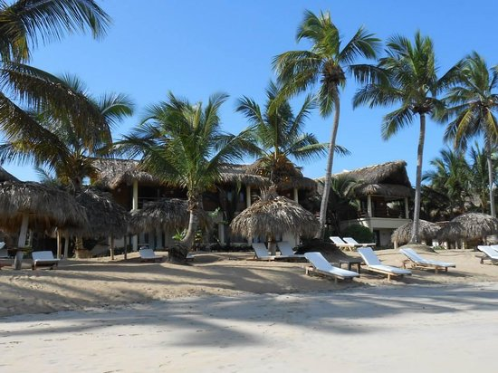 Zoetry Agua Punta Cana : oceanfront suites