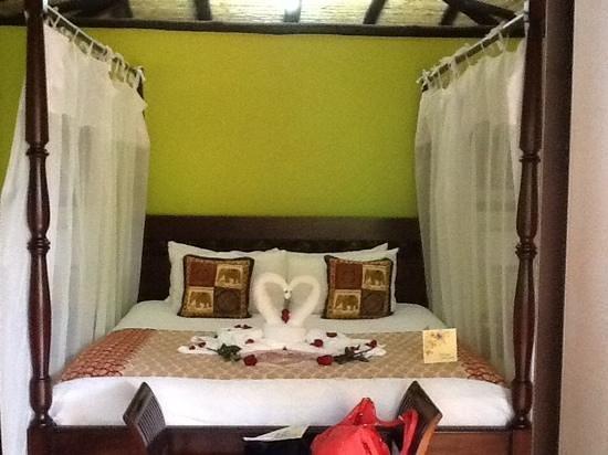 Nayara Hotel, Spa & Gardens : cygnes