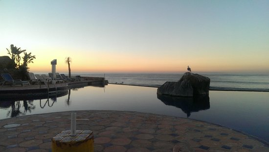 Las Rocas Resort and Spa : view from the infinity pool