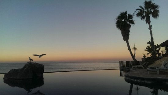 Las Rocas Resort and Spa: View over infinity pool by new tower