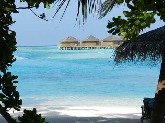 Anantara Veli Maldives Resort : Пляжи отеля