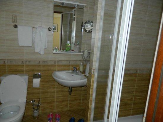 Korall Guest house : Ванная без ванны