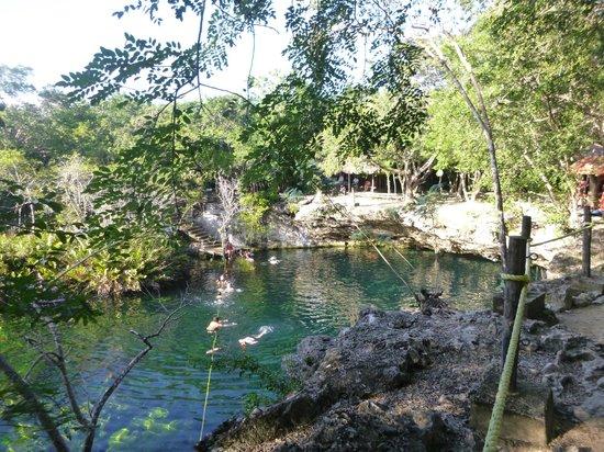 Side view picture of cenote jardin del eden yucatan for Jardin eden