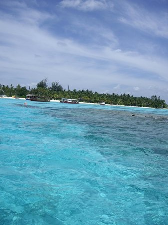 Centara Grand Island Resort & Spa Maldives : First view of the Island on Arrival