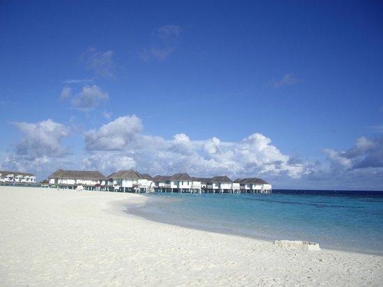 Centara Grand Island Resort & Spa Maldives : Heaven, can't wait to go back