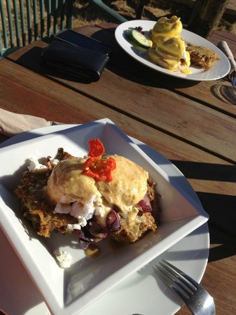 Kaffee Klatsch: Eggs Benny on Potato Hash GF