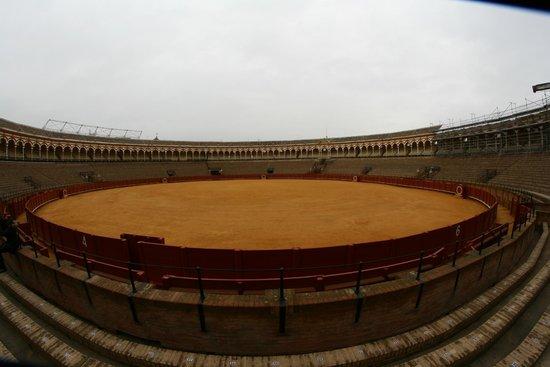 Plaza de Toros de la Maestranza: arena