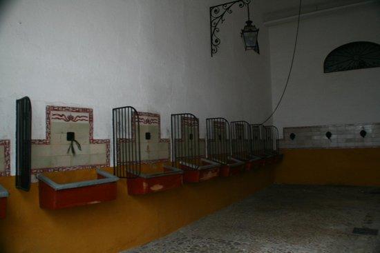 Plaza de Toros de la Maestranza: stalla cavalli