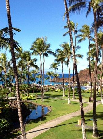 Sheraton Maui Resort & Spa : the Grounds