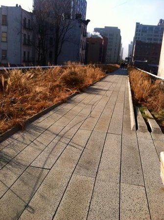The High Line: narrow walkway