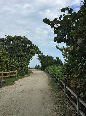 Bahia Honda State Park and Beach: Pathway