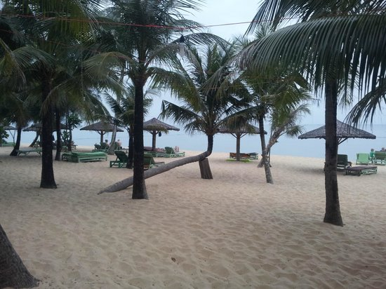 Thanh Kieu Beach Resort : plage Than Kieu