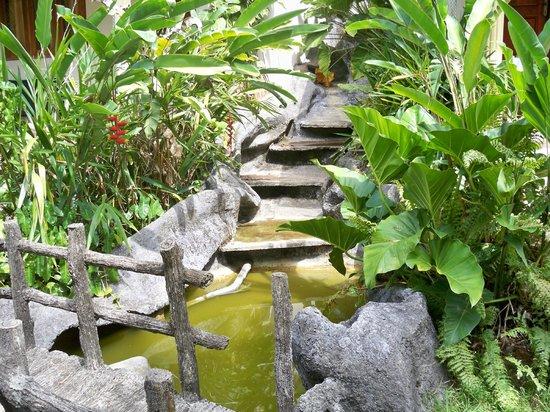 SeethaRama Ayurveda Resort : Gartenanlage