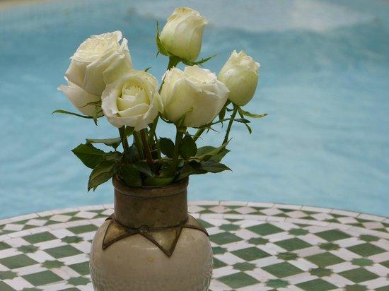 RIad Al Loune: rose, rose, rose, siamo nel paese delle rose...