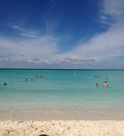 Ixchel Beach Hotel : Ixchel beach
