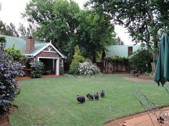 Jameson Country Cottages: View of cottages 4, 5 and 6