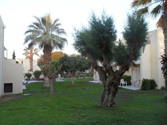 Cretan Malia Park : рядом с бунгало
