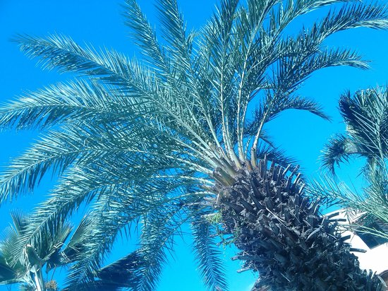 Hotel Atti: Plantas
