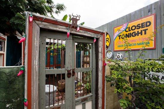 Casa Borrega: back patio