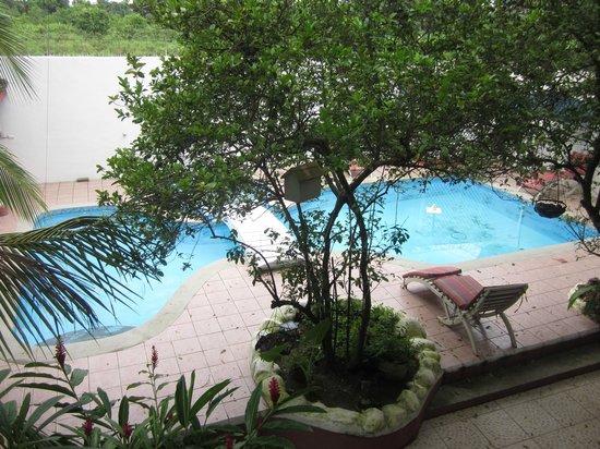 Hotel Boutique Posada Las Iguanas : Desde la habitacion vista a la piscina