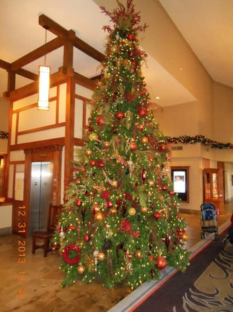The Omni Grove Park Inn: A beautiful tree in one of the hallways
