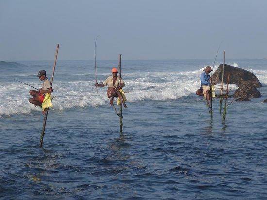 Sri Gemunu Beach Resort : beach