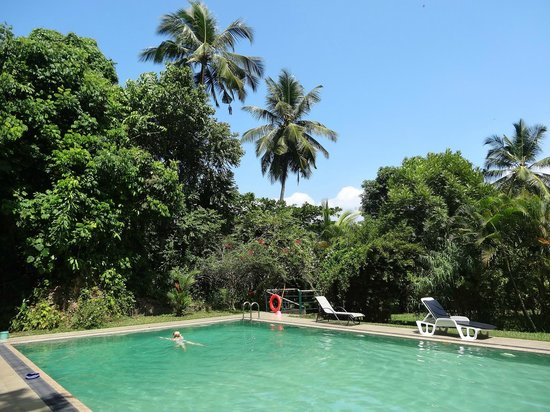 Sri Gemunu Beach Resort : chalet swimming pool