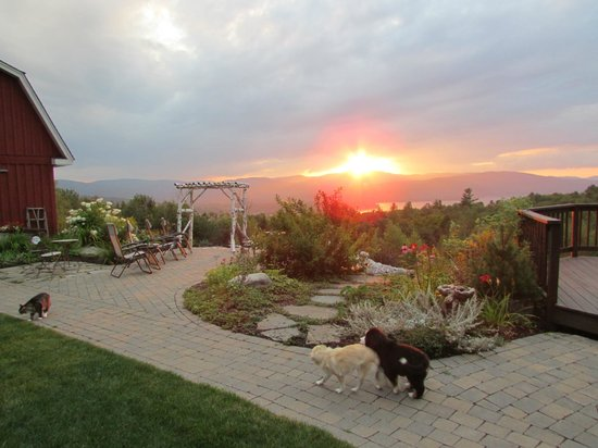 A Newfound Bed & Breakfast: People & pets enjoy the sunset