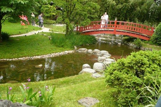 Roseraie picture of albert kahn musee et jardins boulogne billancourt tripadvisor - Jardin d eveil boulogne billancourt ...