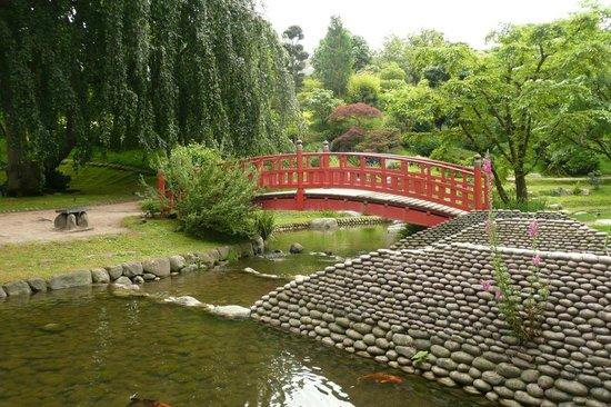 Jardin japonais photo de albert kahn musee et jardins for Albert kahn jardin japonais