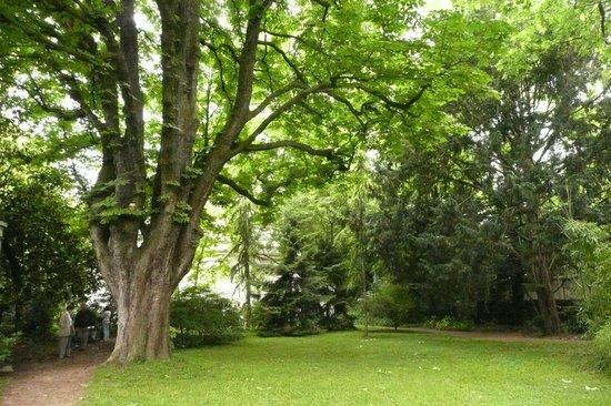 For t picture of albert kahn musee et jardins boulogne billancourt tripadvisor - Jardin d eveil boulogne billancourt ...