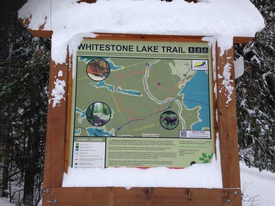 Whitestone Lake Resort: Nature walk!!!