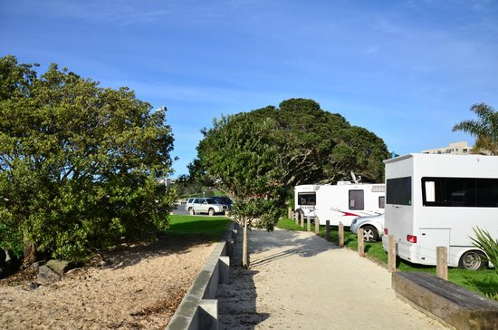 Takapuna Beach Holiday Park : The park