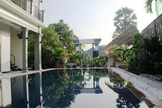 garden & Pool (88119982)