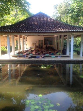 Jiwa Damai Organic Garden & Retreat: Yoga Shala