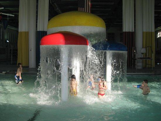 Waynesville Recreation Center: Big Mushrooms