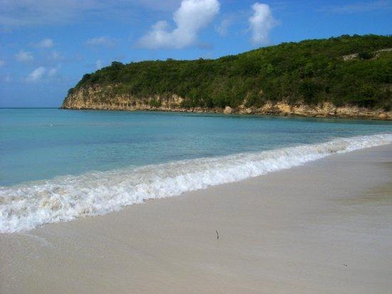 Sandals Grande Antigua Resort & Spa : Beach