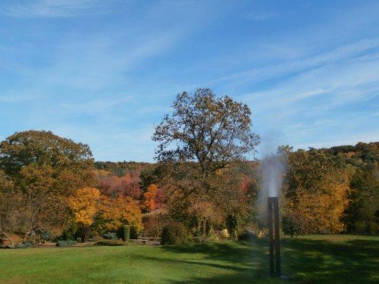 Innisfree Gardens: Serene