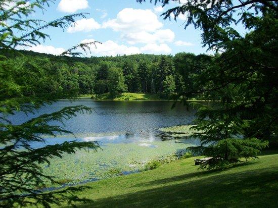 Innisfree Gardens: Summer beauty