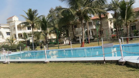Quality Inn Palms : Poolside area - just beside the Cafe! awesome experience was sitting here till 4 AM !