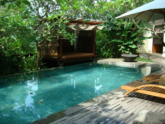 Gending Kedis Villas & Spa Estate : the pool of the suite