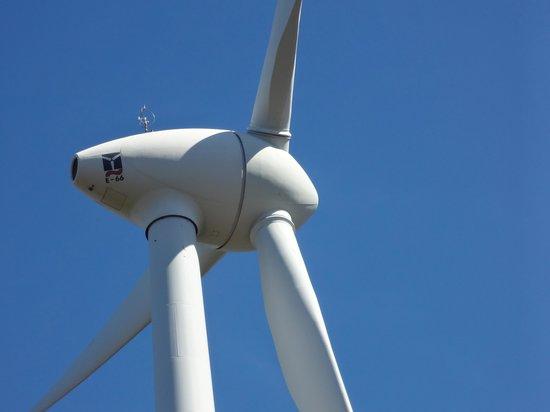 Albany Wind Farm: Up close