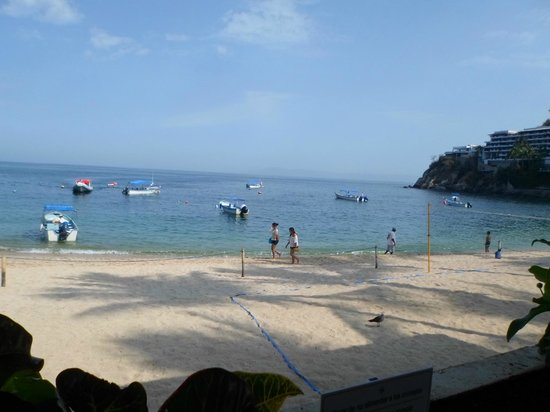 Barcelo Puerto Vallarta: Buen dia!!