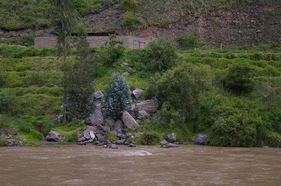 PeruRail - Vistadome: River