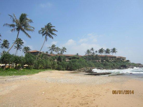 Jetwing Lighthouse: hotellet sett från stranden