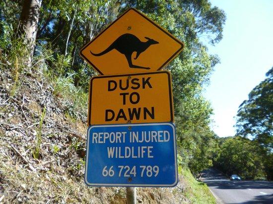 Burringbar, Australie : Local sign